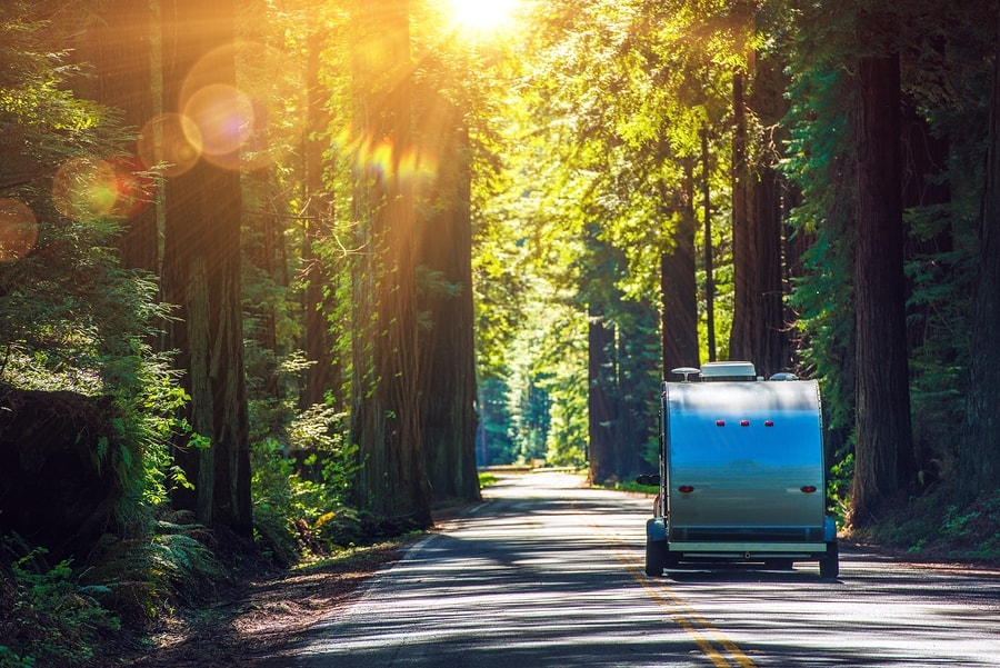 little camper trailer driving in redwoods